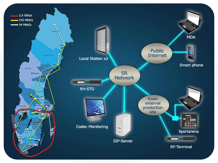 IP, سیگنال رسانی، مطالعه تطبیقی